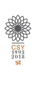 Logo CSY 25 anni